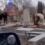 Коровы топтались по могилам и гадили на кладбище в Кисловодске