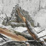 На ставропольском курорте продолжают убирать сломанные деревья